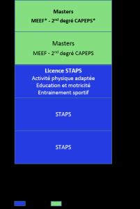Bac+5, STAPS, Sciences et techniques des activités physiques, CAPEPS, enseignement, professeur de sport_c