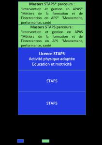 Bac+5 STAPS, Sciences et techniques des activités physiques, activité physique adaptée, éducation et motricité_b