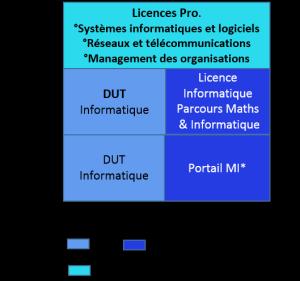 Bac+3 licence professionnelle informatique, systèmes informatiques et logiciels, réseaux et télécommunications, management des organisations_b