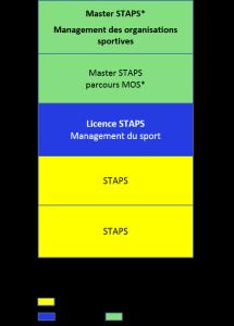 Bac+5, STAPS, sciences et techniques des activités physiques et sportives, management des organisations sportives