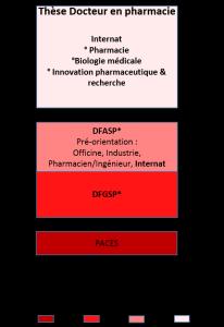Docteur en pharmacie internat biologie médicale pharmacie hospitalière ou spécialisée Lyon